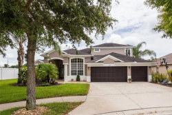 Photo of 2413 Fountain Grass Drive, VALRICO, FL 33594 (MLS # T3118116)