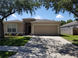 Photo of 25022 Hyde Park Boulevard, LAND O LAKES, FL 34639 (MLS # T3118312)