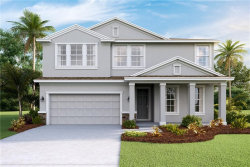 Photo of 6630 Devesta Loop, PALMETTO, FL 34221 (MLS # T3119683)