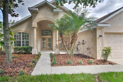 Photo of 6122 Whimbrelwood Drive, LITHIA, FL 33547 (MLS # T3119746)