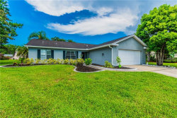 Photo of 9824 Zaharias Court, NEW PORT RICHEY, FL 34655 (MLS # T3119791)