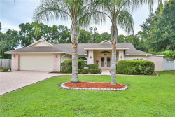 Photo of 3745 Knollside Court, LAND O LAKES, FL 34639 (MLS # T3119915)