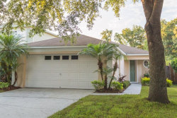 Photo of 1715 Mosaic Forest Drive, SEFFNER, FL 33584 (MLS # T3120094)