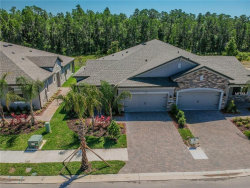 Photo of 19351 Hawk Valley Drive, TAMPA, FL 33647 (MLS # T3120380)