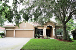 Photo of 2416 Blue Stone Court, VALRICO, FL 33594 (MLS # T3120421)