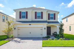Photo of 19264 Roseate Drive, LUTZ, FL 33558 (MLS # T3124560)
