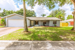 Photo of 3206 Acapulco Drive, RIVERVIEW, FL 33578 (MLS # T3124753)