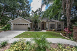 Photo of 2101 Fawn Meadow Drive, VALRICO, FL 33594 (MLS # T3125000)