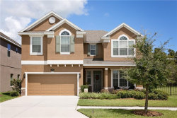 Photo of 19313 Water Maple Drive, TAMPA, FL 33647 (MLS # T3125260)