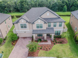 Photo of 10311 Clover Pine Drive, TAMPA, FL 33647 (MLS # T3125329)