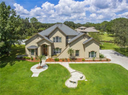 Photo of 8935 Woodleaf Boulevard, WESLEY CHAPEL, FL 33544 (MLS # T3125556)