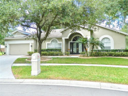 Photo of 9627 Norchester Circle, TAMPA, FL 33647 (MLS # T3125589)