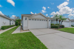 Photo of 30215 Emmetts Court, WESLEY CHAPEL, FL 33543 (MLS # T3125640)