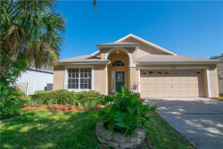 Photo of 16004 Magnolia Hill Street, CLERMONT, FL 34714 (MLS # T3125987)