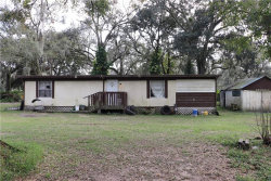 Photo of 5321 Hollyberry Court, DOVER, FL 33527 (MLS # T3129648)