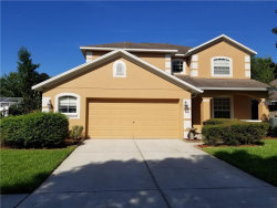 Photo of 2961 Hickory Grove Drive, VALRICO, FL 33596 (MLS # T3131045)