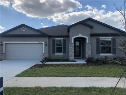 Photo of 7807 Yale Harbor Drive, WESLEY CHAPEL, FL 33545 (MLS # T3131308)
