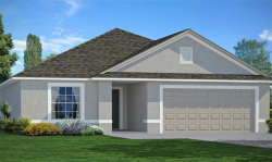 Photo of 10055 Geese Trail Circle, SUN CITY CENTER, FL 33573 (MLS # T3131346)