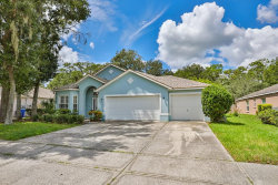 Photo of 3713 Hollow Wood Drive, VALRICO, FL 33596 (MLS # T3131487)
