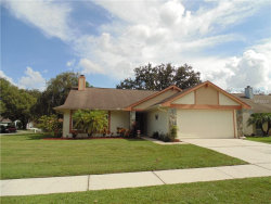 Photo of 2004 Branch Tree Lane, BRANDON, FL 33511 (MLS # T3131528)