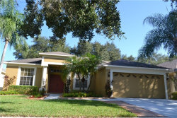 Photo of 19130 Cherry Rose Circle, LUTZ, FL 33558 (MLS # T3131681)