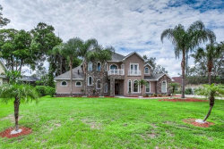Photo of 19925 Dolores Ann Court, LUTZ, FL 33549 (MLS # T3131788)