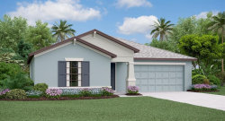 Photo of 14146 Covert Green Place, RIVERVIEW, FL 33579 (MLS # T3131979)