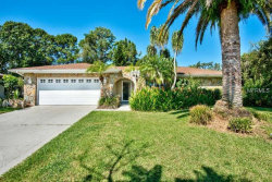 Photo of 3400 Ferncliff Lane, CLEARWATER, FL 33761 (MLS # T3132291)