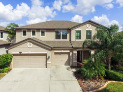 Photo of 11406 Sand Stone Rock Drive, RIVERVIEW, FL 33569 (MLS # T3134927)