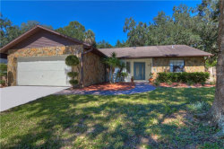 Photo of 622 Timber Pond Drive, BRANDON, FL 33510 (MLS # T3136451)