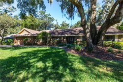 Photo of 408 Copperleaf Circle, BRANDON, FL 33511 (MLS # T3136471)