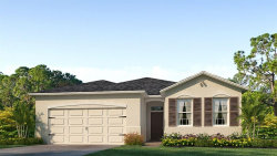 Photo of 31449 Tansy Bend, WESLEY CHAPEL, FL 33545 (MLS # T3136516)