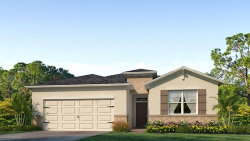 Photo of 31799 Tansy Bend, WESLEY CHAPEL, FL 33545 (MLS # T3136525)