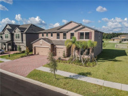 Photo of 10318 Clover Pine Drive, TAMPA, FL 33647 (MLS # T3137432)