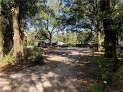 Photo of 229 Marge Owens Road, DOVER, FL 33527 (MLS # T3139566)