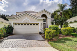 Photo of 8438 Idlewood Court, LAKEWOOD RANCH, FL 34202 (MLS # T3140788)