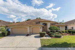 Photo of 3434 Foxhall Drive, HOLIDAY, FL 34691 (MLS # T3141385)