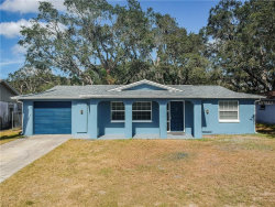 Photo of 5533 Silver Spur Drive, HOLIDAY, FL 34690 (MLS # T3141675)
