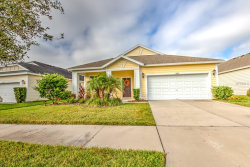 Photo of 11566 Balintore Drive, RIVERVIEW, FL 33579 (MLS # T3142225)