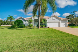 Photo of 3902 Hidden Spring Place, VALRICO, FL 33596 (MLS # T3142250)
