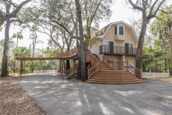 Photo of 4502 Coconut Cove Place, VALRICO, FL 33596 (MLS # T3142656)