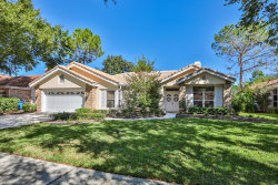 Photo of 17919 Holly Brook Drive, TAMPA, FL 33647 (MLS # T3143082)