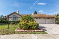 Photo of 15026 Meadowlake Street, ODESSA, FL 33556 (MLS # T3143592)