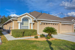 Photo of 31839 Turkeyhill Drive, WESLEY CHAPEL, FL 33543 (MLS # T3146120)