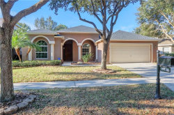 Photo of 19138 Dove Creek Drive, TAMPA, FL 33647 (MLS # T3146474)