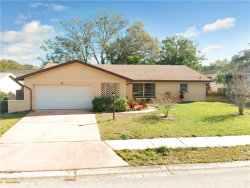 Photo of 33 Harbor Woods Circle, SAFETY HARBOR, FL 34695 (MLS # T3149628)