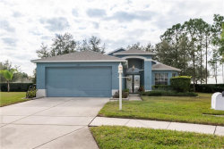 Photo of 1309 Hickory Moss Place, TRINITY, FL 34655 (MLS # T3150491)