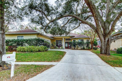 Photo of 237 Brookside Court, PALM HARBOR, FL 34683 (MLS # T3151067)