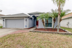 Photo of 10259 Oasis Palm Drive, TAMPA, FL 33615 (MLS # T3151072)