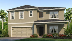Photo of 2594 Garden Plum Place, ODESSA, FL 33556 (MLS # T3151340)